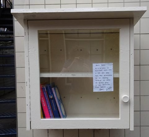 DIY Build it yourself Free little library by Chris