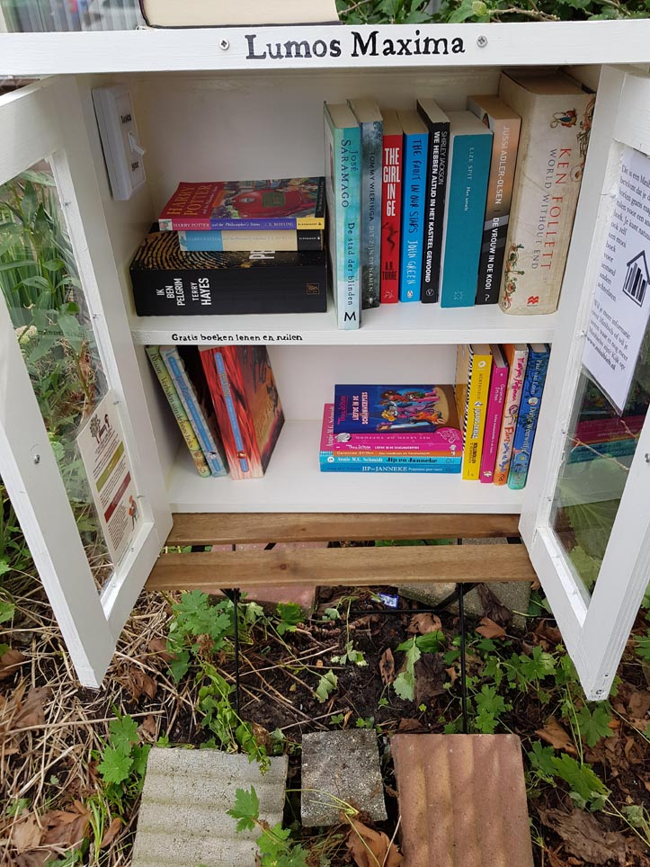 DIY Build it yourself Free little library by Eva