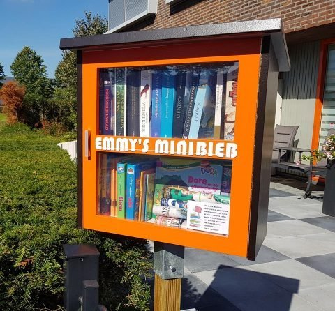 DIY Build it yourself Free little library by Emmy